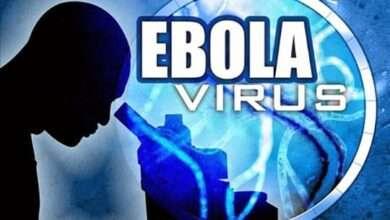 ¿Cuánto se ha avanzado con el virus del Ébola?