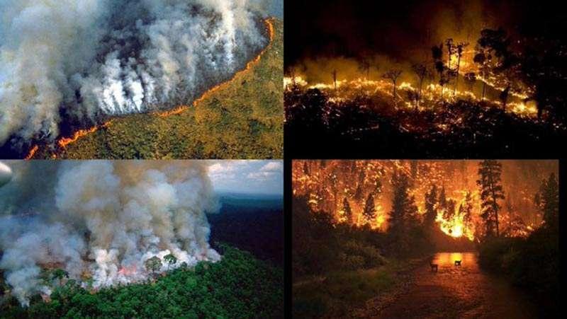La Selva Amazónica de Brasil arde en llamas a gran velocidad