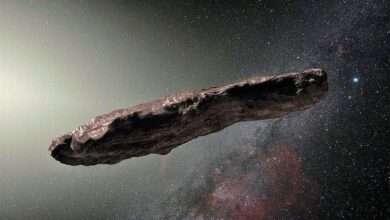 Oumuamua 2.0- objeto interestelar - Sistema Solar