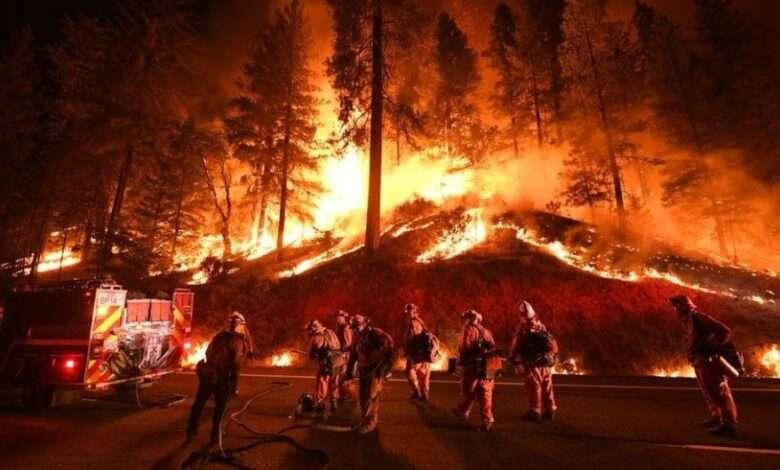 incendios forestales bomberos apagando el fuego