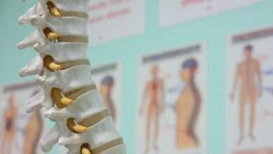 médula espinal enfermedades
