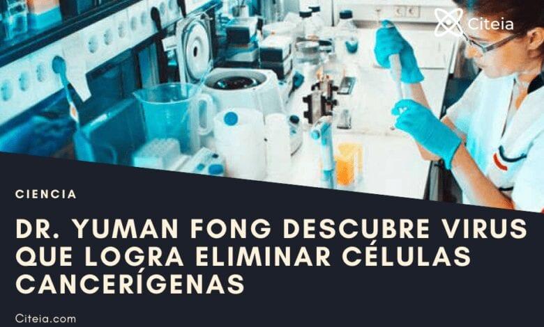 virus que logra eliminar células cancerígenas