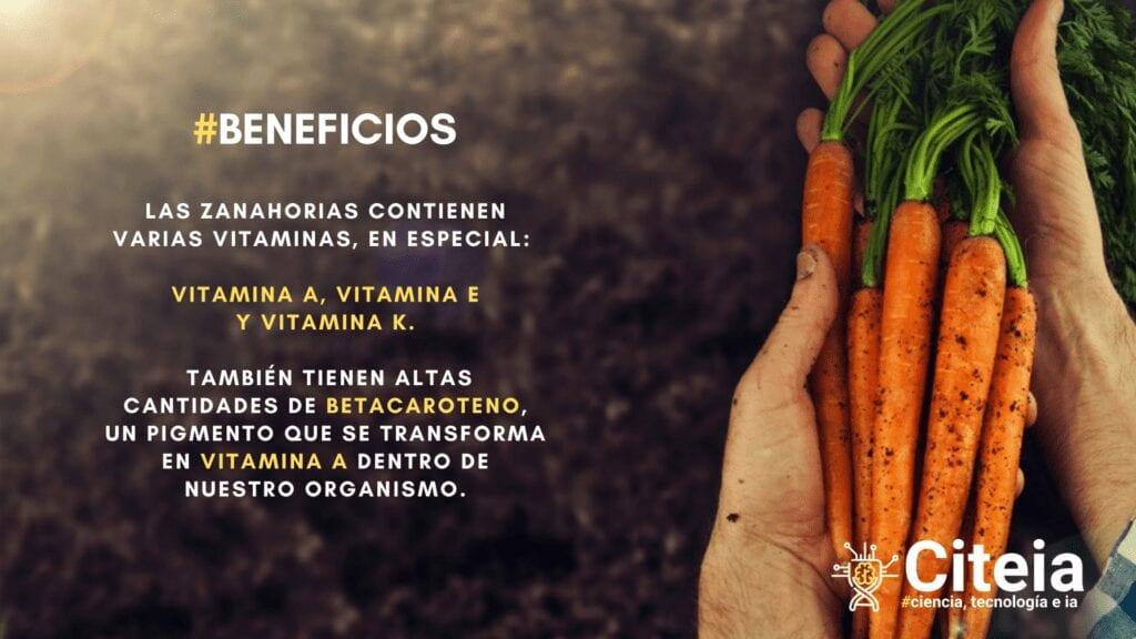 propiedades de la zanahoria, vitaminas y betacaroteno. Perfecto para remedio casero para la gripe
