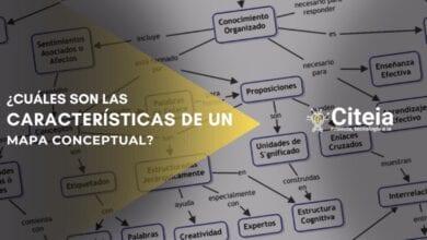 características de un mapa conceptual portada de artículo