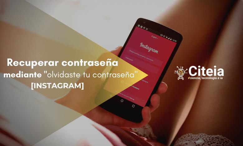 cómo recuperar contraseña de instagram portada de artículo