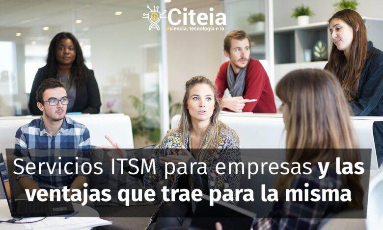Servicios ITSM para empresas y las ventajas que traen para la misma portada de artículo
