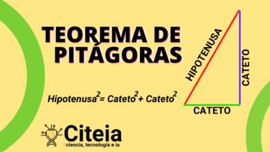 Pitágoras y su Teorema [FÁCIL] portada de artículo